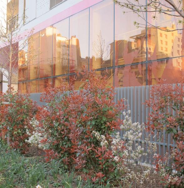 Fleurs devant la maison