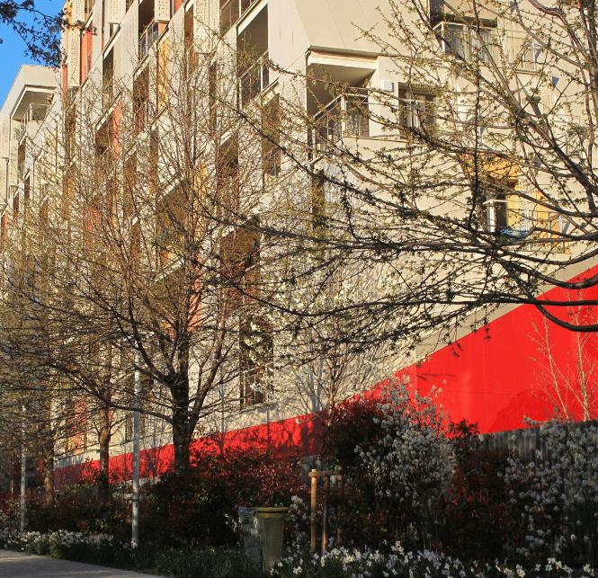 Immeuble dans fleurs
